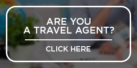 Travel Agent cheap rent a car